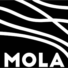 MOLA (Museum of London Archaeology)